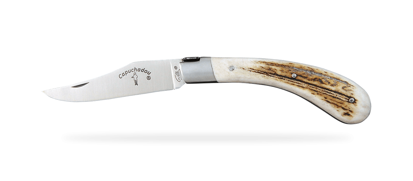 """""""Le Capuchadou®"""" 12 cm hand made knife, Stag"""