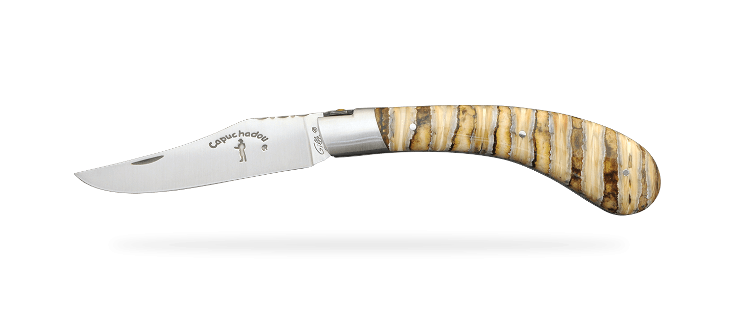 """""""Le Capuchadou®-Guilloché"""" 12 cm hand made knife, molar tooth of mammoth"""